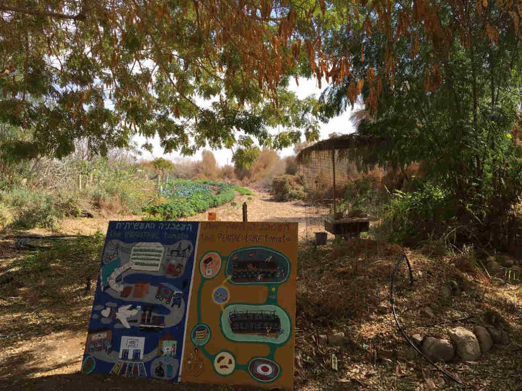 Kibboutz Lotan Permaculture