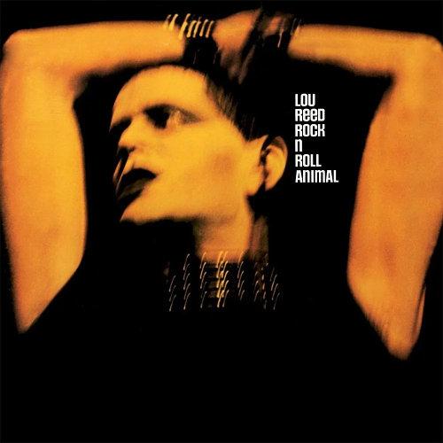 Pochette album Lou Reed Jewpop