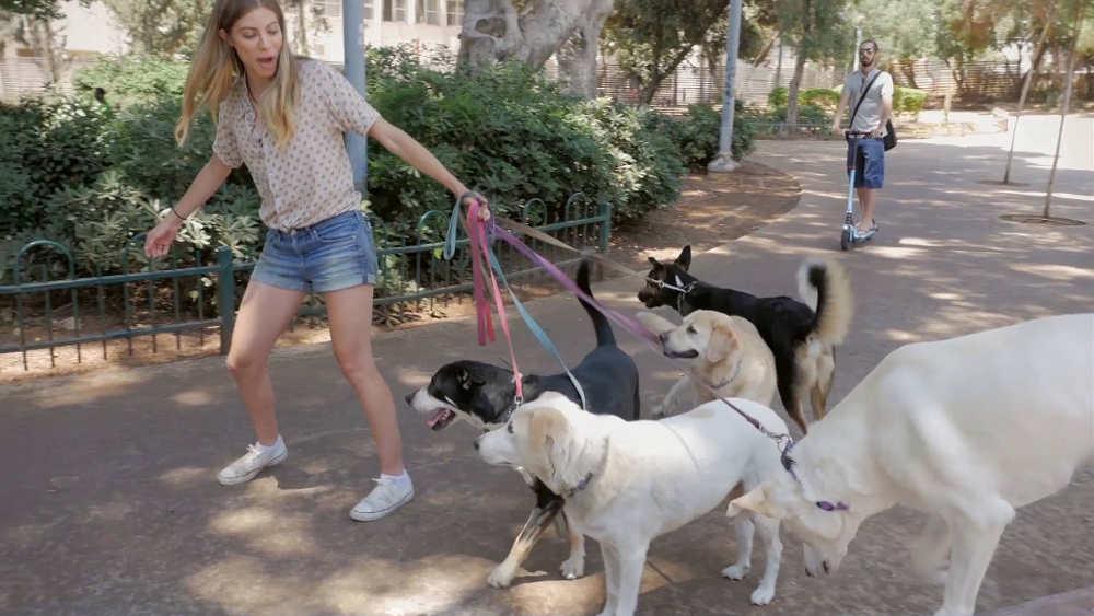 Promeneuse chiens Tel-Aviv