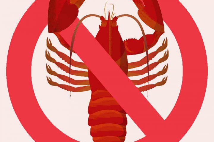 Visuel d'un homard non casher Jewpop