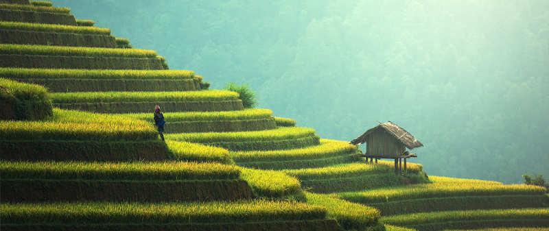 Photo d'une maison dans la campagne Asie Jewpop